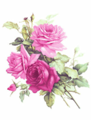 Vintage Image Victorian Shabby Pin Cabbage Roses Furniture Transfer Decals FL498