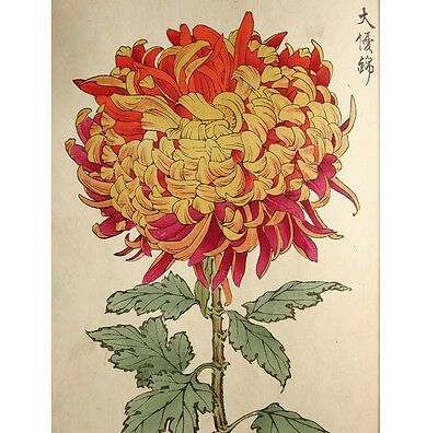 19th C Japanese Antique Woodblock printed picture book many illustrations D540