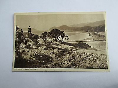 Postcard of Mawddach Estuary, Dolgelly Unposted RA Series