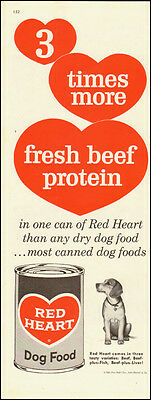 1960-Red Heart Dog Food`red hearts`Beagle-Vintage Ad