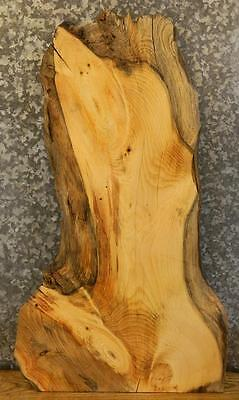 Very Rustic Partial Live Edge Pine Sofa/Accent/Coffee Table Top Slab 4179