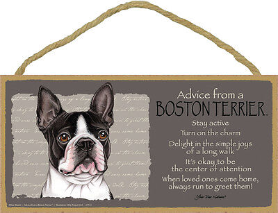 Advice From A BOSTON TERRIER Dog Head 5 x 10 Wood SIGN Plaque USA Made