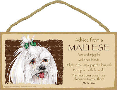 Advice From A MALTESE Dog Head 5 x 10 Wood SIGN Plaque USA Made