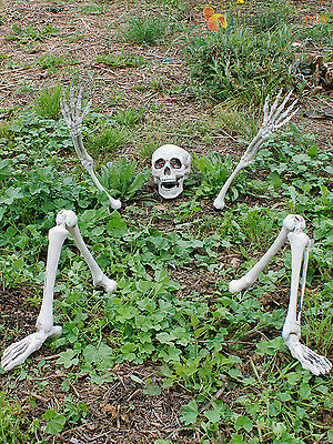 Halloween Light Up Ground Breaker Skeleton Party Prop Decoration Graveyard Bones