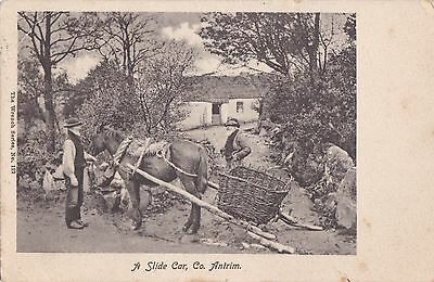 sa northern ireland postcard ulster co. antrim horse slide car