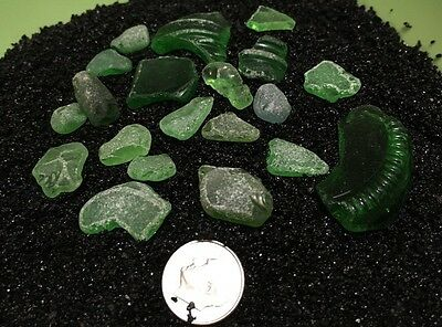 Beach Sea Glass 20pc Lime Green Genuine Naturally Tumbled Hawaiian Treasures