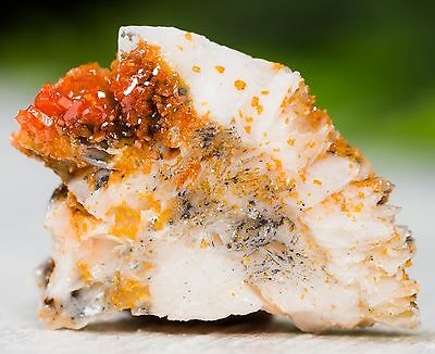 Red Orange Vanadinite Crystals W/ Barite Blades - From Morocco