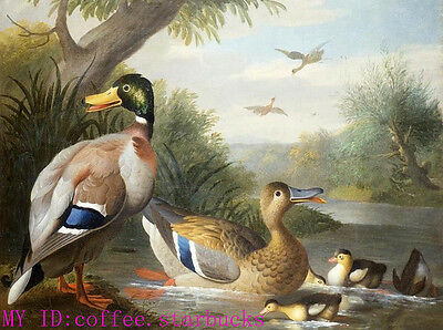 """Art Repro oil painting:""""animals ducks at canvas"""" 24x36 Inch"""