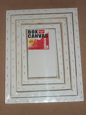 Pack Of 5 Box Asst Size  Blank/plain  Cotton Artist Canvas/canvases-Painting/art
