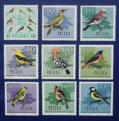 POLAND- 1966 FOREST BIRDS - Full Set of 9 - MNH