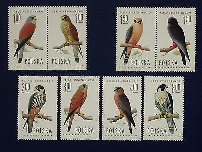 POLAND- 1974 FALCONS Complete Set of 8 - MNH