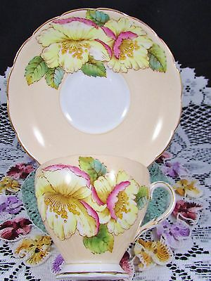 Foley Hand Painted White Pink Floral Peach Tea Cup And Saucer