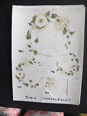 4 Ceramic Decal Sample Sheets- Convolvulus (Bind Weed) Flowers