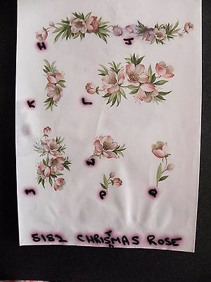 2 Ceramic Decal Sample Sheets - Christmas Rose Flowers
