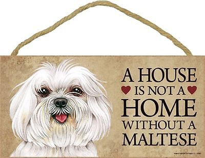 A House Is Not A Home MALTESE Puppy Cut Dog 5x10 Wood SIGN Plaque USA Made