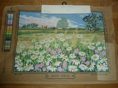 Penelope Daisy Field Printed Tapestry Canvas 35.5 * 50.5Cms  Mc106