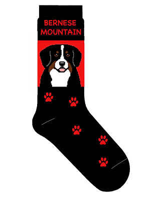 Bernese Mountain Dog Socks Lightweight Cotton Crew Stretch