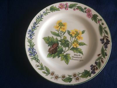 "Royal Worcester Worcester herbs 6 5/8"" side plate (chip to green rim paint )"