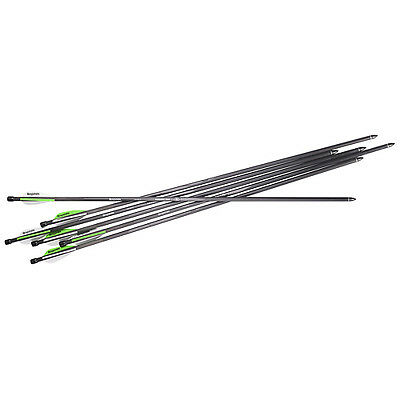 Benjamin Airbow Arrows/Bolts 6 Pack