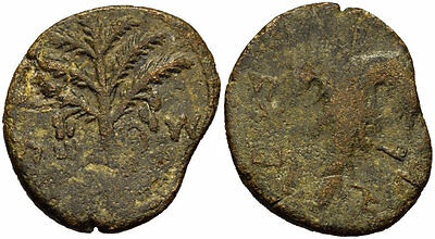 FORVM Bar Kochba Jewish Revolt AE26 Seven Branched Palm Tree / Grape Leaf