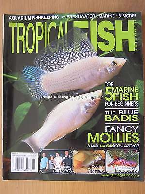 Tropical Fish Hobbyist May 2012 Mollies Blue Badis Doctor Fishes Reef Lobsters