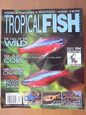 Tropical Fish Hobbyist December 2012 Black Cory Niger Triggerfish Spiny Lobsters