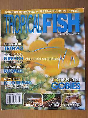 Tropical Fish Hobbyist March 2011 Penguin Tetras Firefish Whiptail Catfish Gobie