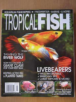 Tropical Fish Hobbyist May 2013 River Wolf Giant Clam Parrotfish Boxer Crabs
