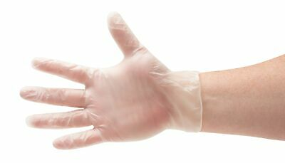 6000 Disposable Gloves Vinal Powder Free Food Glove (Non Latex Vinyl Exam) Large