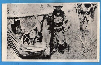 1965 Wounded ARVN Paratrooper in Improvised Stretcher Original Press Wirephoto