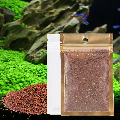 Fish Tank Aquarium Plant Seeds Aquatic Water Grass Decor Garden Office Decor