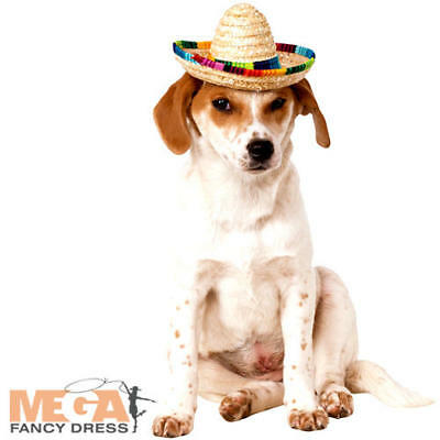 Sombrero Hat Dog Fancy Dress Mexican Festival Party Animal Pet Costume Accessory