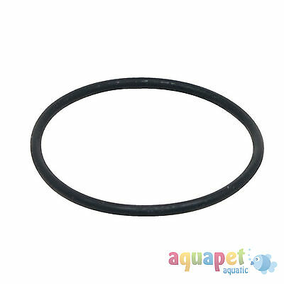 Fluval FX5 External Filter Motor Seal Ring