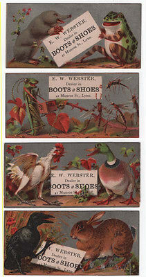 (4) Lynn, MA,  E. W. WEBSTER, Boots & Shoes Trade Cards, Comical Animals