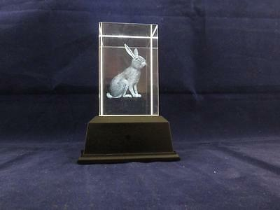 Solid Glass Crystal Laser Block and White Light Box - Rabbit.