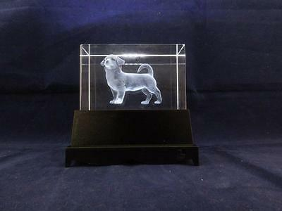 Solid Glass Crystal Laser Block and White Light Box - Dog.