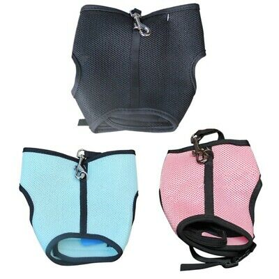 USeful Soft Harness With Stretchy Elastic Leash For Rabbit Bunny Pet Supply US