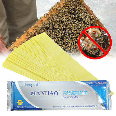 40pcs Strips ManHao Fluvalinate Strip Bee Mite Varroa Killer Beekeeping Medicine