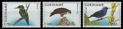 Surinam 1996 - Mi-Nr. 1562-1564 ** - MNH - Vögel / Birds