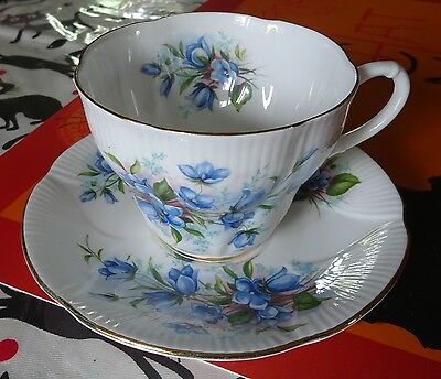 Pretty Royal Albert Tea Cup and Saucer Set with Blue Flowers