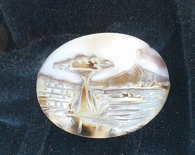 Vtg Torre d Greco Coralli Hand Carved Cameo Italy Shell Coral Mt Vesuvius FRAMED