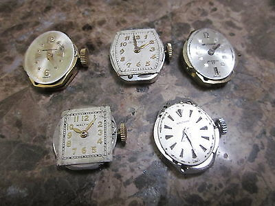 5 Antique Waltman Women's Wrist Watch Movements 4 17 1 7 Jewels