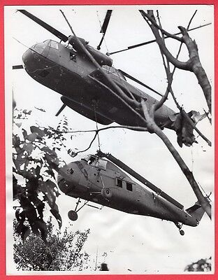 1967 Retrieving Marine UH-19 CH-19 Helicopter Hill 110 Vietnam Orig. News Photo