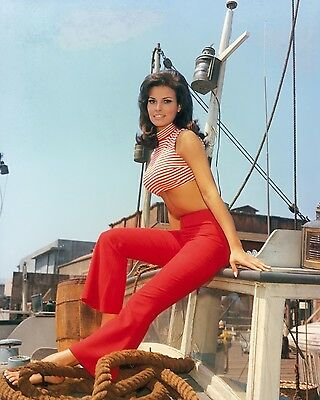 Raquel Welch 8 x 10 / 8x10 GLOSSY Photo Picture IMAGE #13