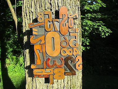 Letterpress Printing Antique Wood Type Graphic Design Wall Piece Mix Numbers Etc