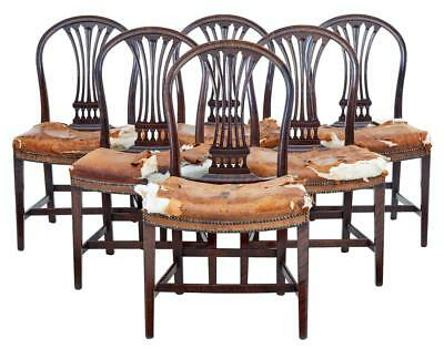 Set Of 6 19Th Century Birch Swedish Dining Chairs
