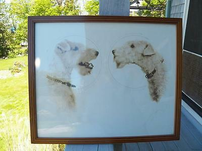 Vintage wire haired  Fox Terrior framed and signed photo or print