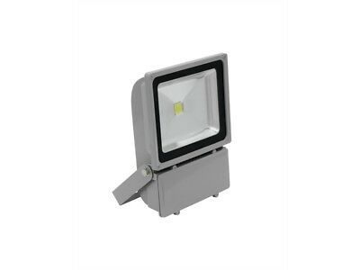 EUROLITE LED IP FL-100 COB 6400K 120° Outdoor IP65