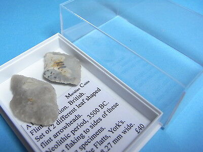 x 2 British Neolithic 3500 BC Leaf Shaped Flint Arrowheads With Case (A1027)