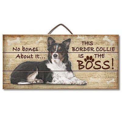 Border Collie Is The Boss Reclaimed Pallet Wood Sign USA Made